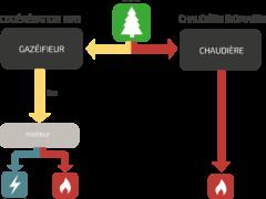 schema-vector-biomasse